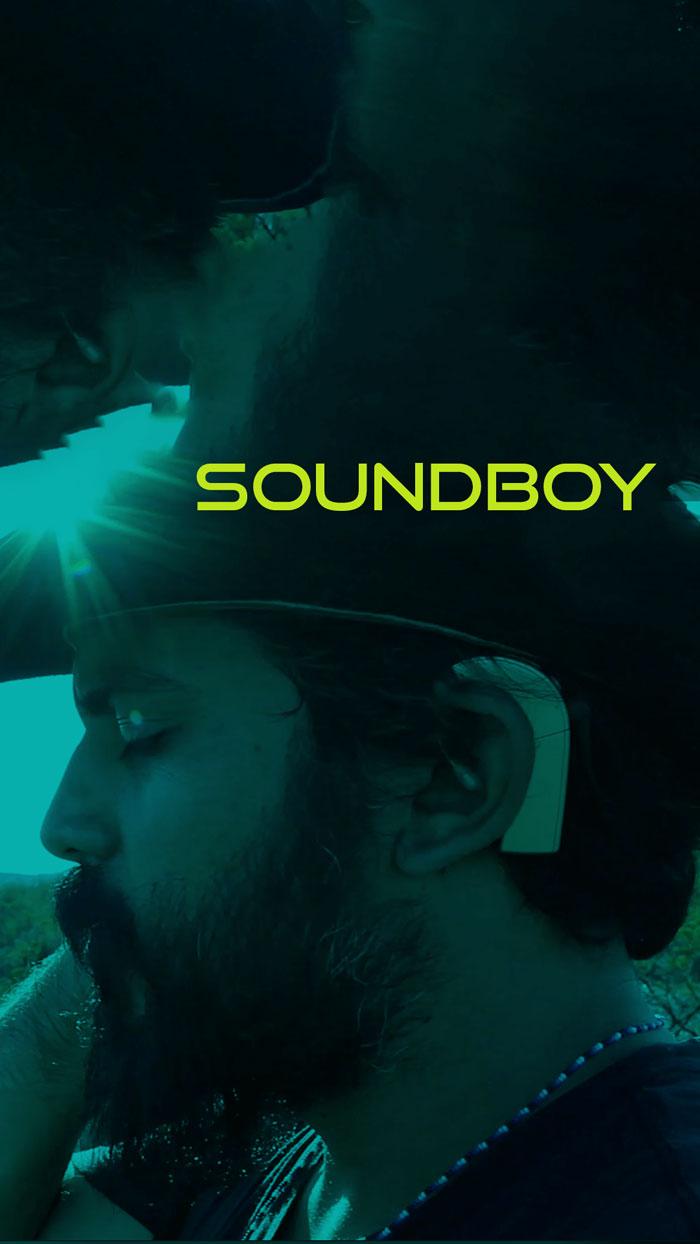 Best Picture System - Soundboy